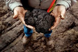 Alberta oil sands 5.jpg